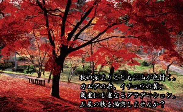 新潟紅葉名所⑨にいがた景勝100選・村松公園