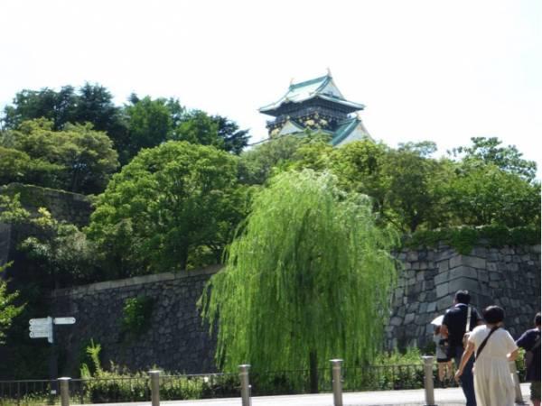 大阪のおすすめ遊び場⑨お城を眺めてお散歩!大阪城公園