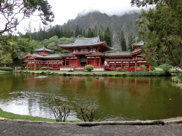 京都府寺巡りランキング③日本人なら一度は行きたい「平等院鳳凰堂」