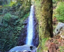 岐阜県パワースポットランキング③パワースポットを語るには外せない、超有名な滝!養老の滝