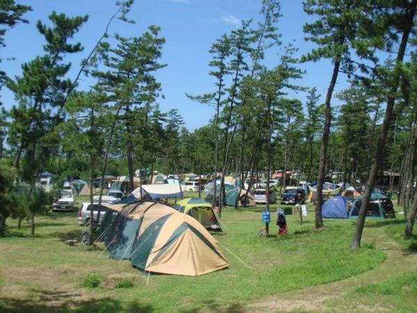石川県キャンプ場ランキング②キャンプビギナーに超お勧め!休暇村能登千里浜シーサイドオートキャンプ場