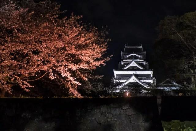 ⑨桜の名所でもある熊本城