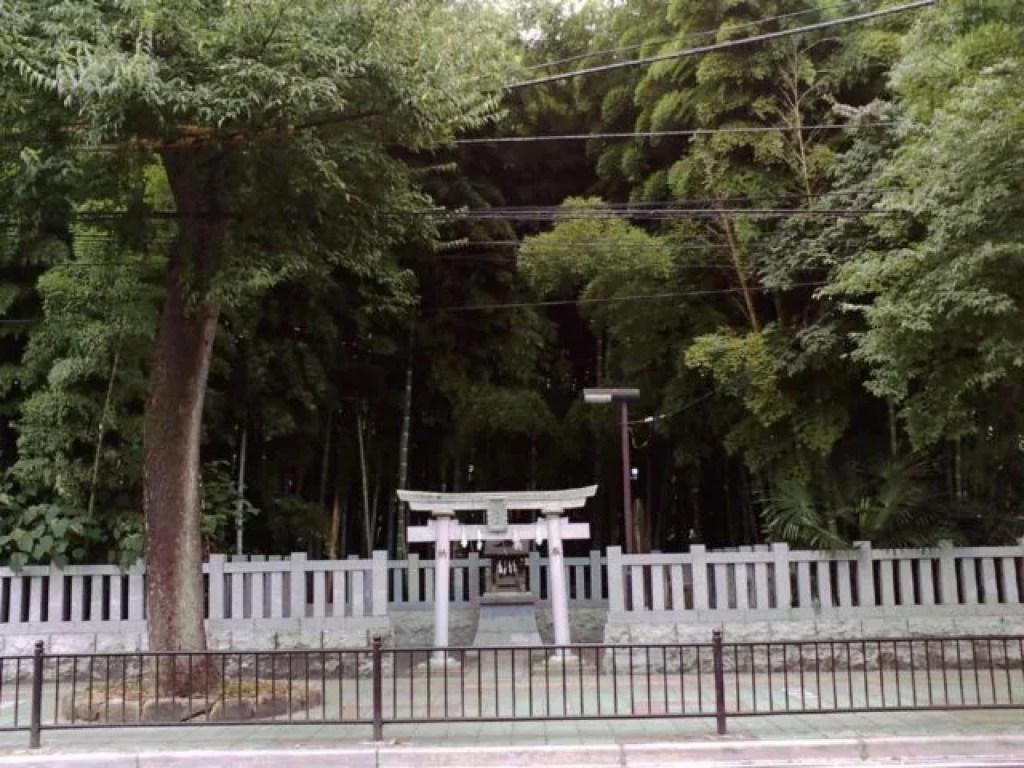 千葉県最強危険心霊スポット⑤街の中心に不気味な「八幡の藪知らず」