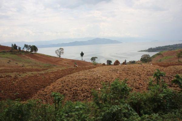Sud-Kivu : Les agriculteurs devraient revoir leur système pour le ravitaillement des ménages en premier lieu.