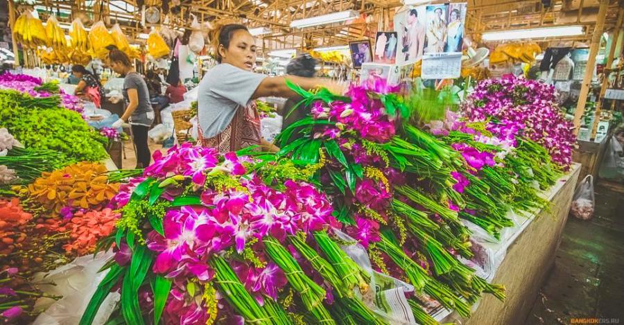 Орхидеи на цветочном рынке в Бангкоке