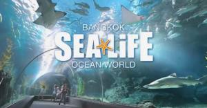 SEA LIFE БАНГКОКСКИЙ ОКЕАНАРИУМ