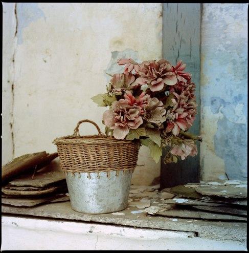 Limerle_132311-Blumen-Limerle