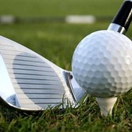#336: All Golf, All the Time