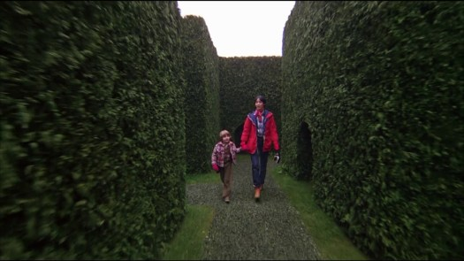 Full size hedge maze, from The Shining (1980)