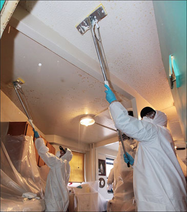 NYCHA contractors conduct mold remediation at LaGuardia Houses , Photo: NYC.gov