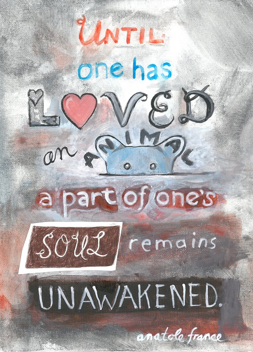 Art, Hand-Lettering, Illustration, Harriet Faith, Painting, Drawing, Success, Motivation, Daily Practice, Inspiration, Quotes, Dreams, Pay Attention To Your Dreams, Anatole France, Love, Animals, Soul, Awakening, Literature