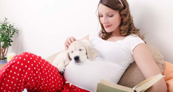 Why dog owners have a better pregnancy