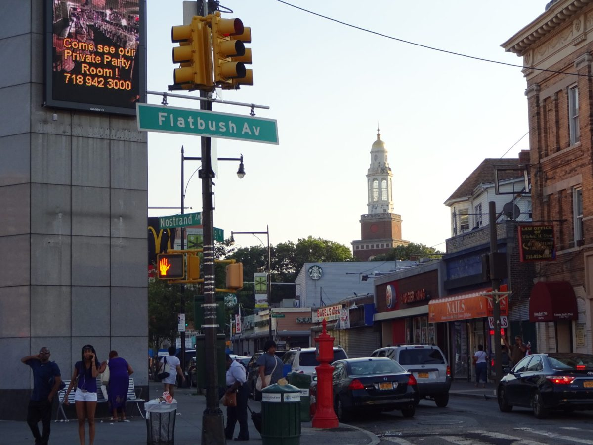 BK Reader, flatbush, equality, housing equality, housing preservation, gentrification Brooklyn, anti-gentrification march, Imani Henry, Before it's Gone, Take it Back, Flatbush Business Improvement District,Stand With the Street Vendors,