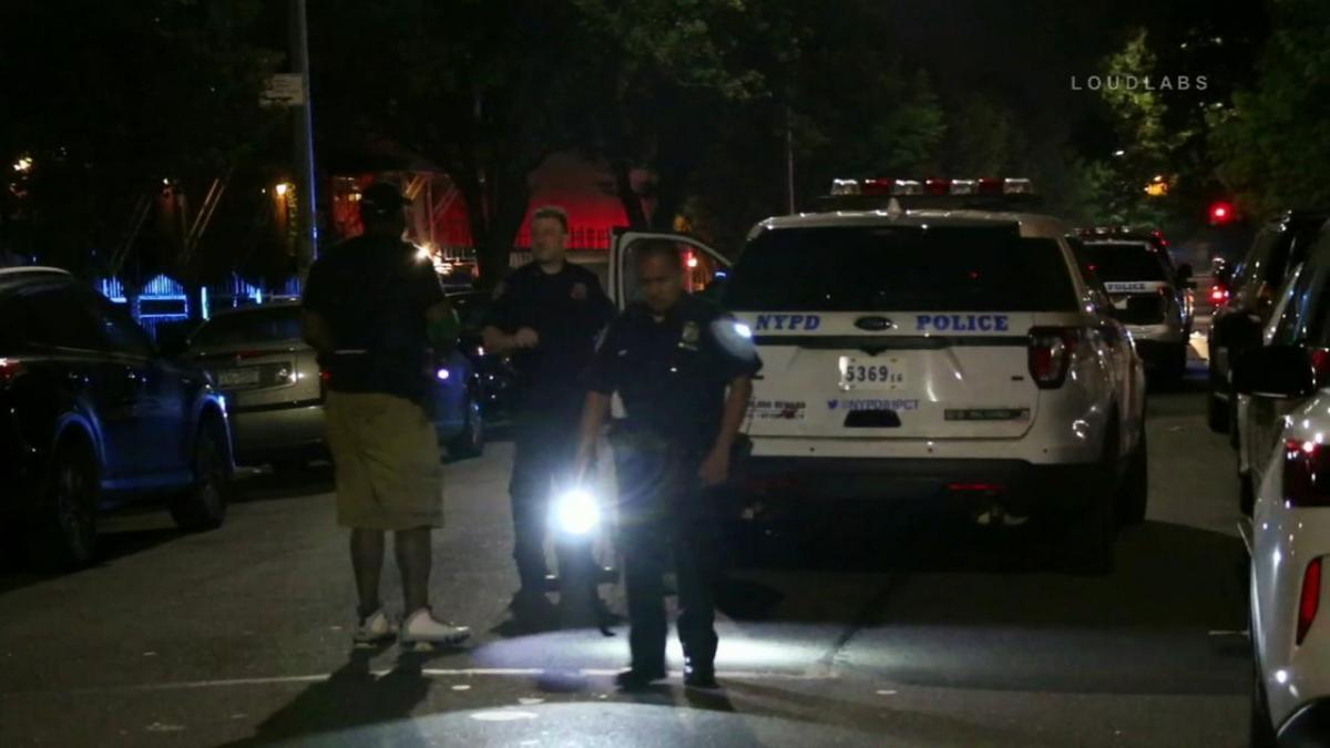 Grandmother stabbed while trying to breakup fight in Brooklyn