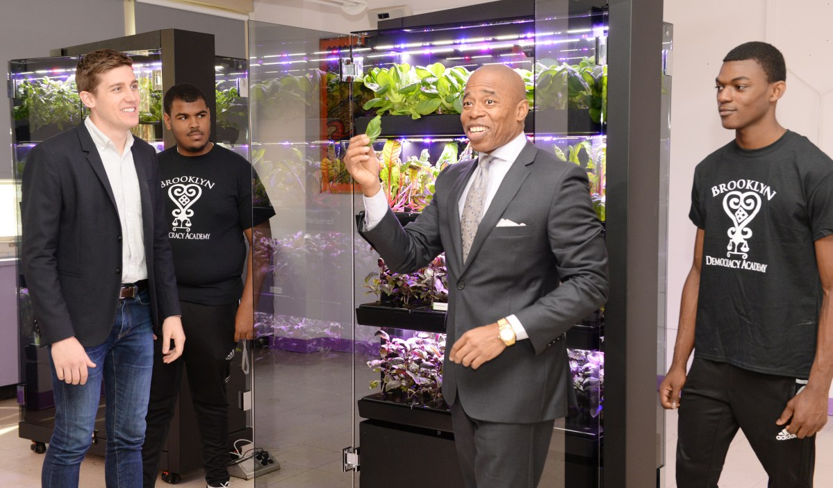 A Vertical Farm Grows in Brownsville.