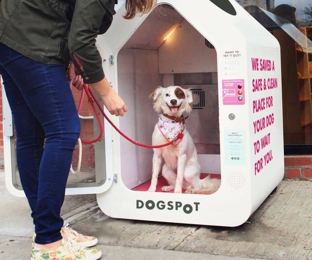 Thanks to a new bill Brooklynites will soon have a dog houses to keep their doggies secured while going shopping in local businesses.