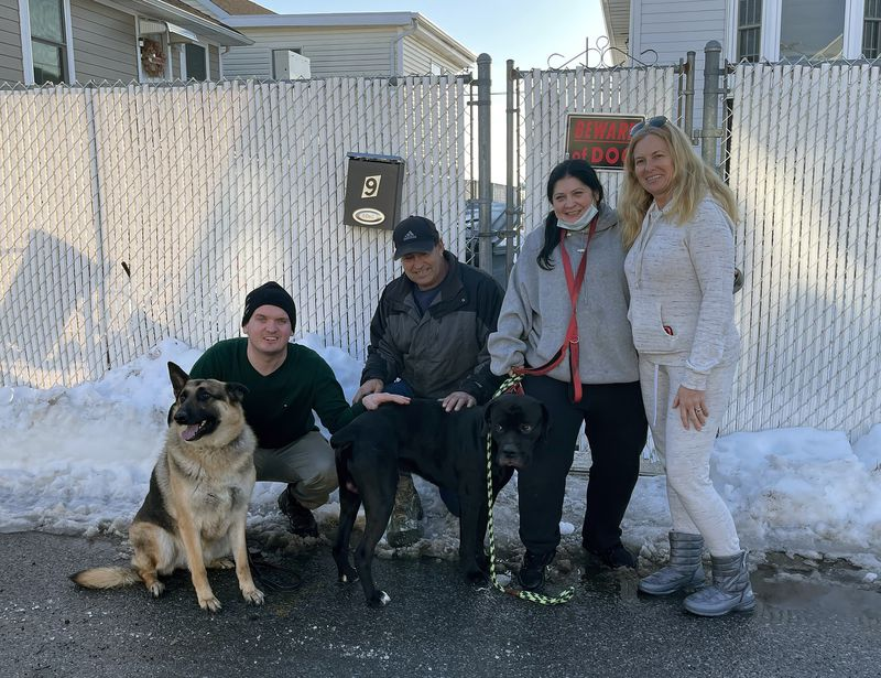 """""""We're just dog people': NYPD cop and team of volunteers used motion sensors, drones — and hot dogs — to track canine through blizzard who went missing in fatal Brooklyn crash"""