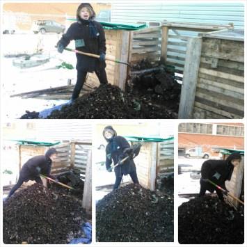 Hilary Compost 2015