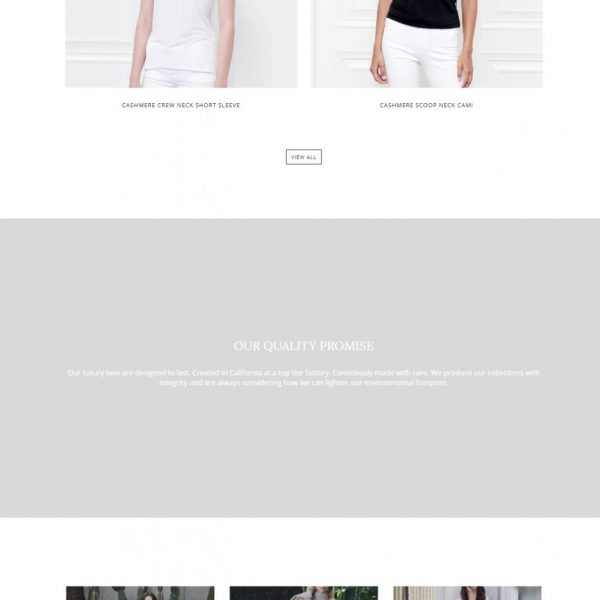 Fite Luxury Shopify Website
