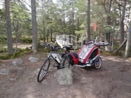 Aviemore cycle with kids (17)