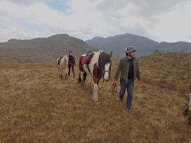 Jenny took a trip through Knoydart on horseback in June. (Jenny Gillies)