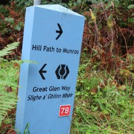 Sign at forest junction of Great Glen Way and hill path to Munros.