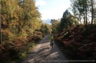 Heading along the track towards Loch an Eilein.