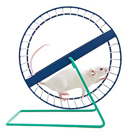 A mouse running on a wheel