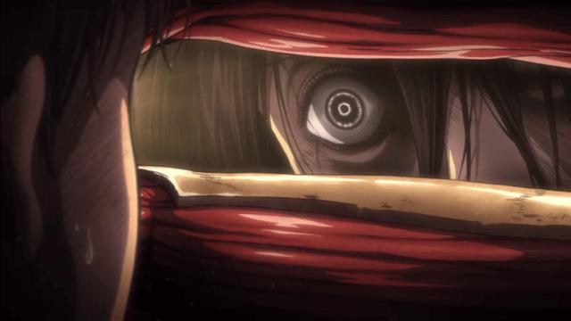 Mikasa Will Cut A Bitch.png