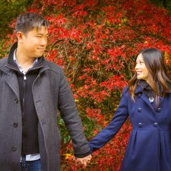 engaged couple holding hands in front of red tree at Mt Dandenong Ranges
