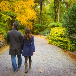 couple walking down the red trees forest captured by candid photographer naturally
