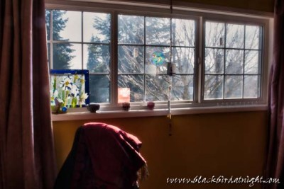The Fall of Winter © 2012 Jane Waterman