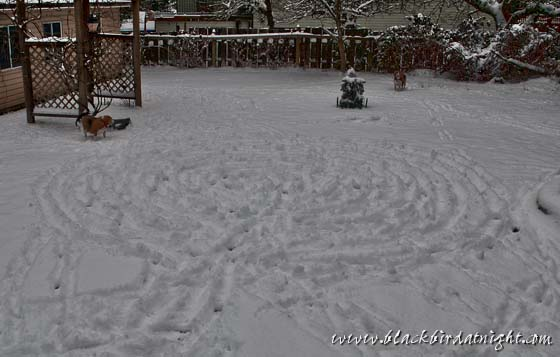 Snow Labyrinth © 2012 Jane Waterman