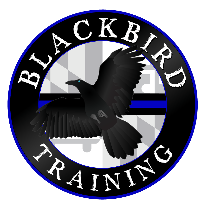 Blackbird Training