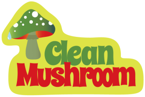 Logo with green mushroom and the name Clean Mushroom