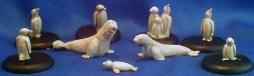 Seals & Penguins group