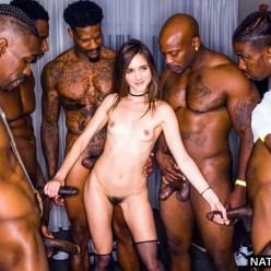 Black Cock Queens: Elle Fanning - image  on https://blackcockcult.com
