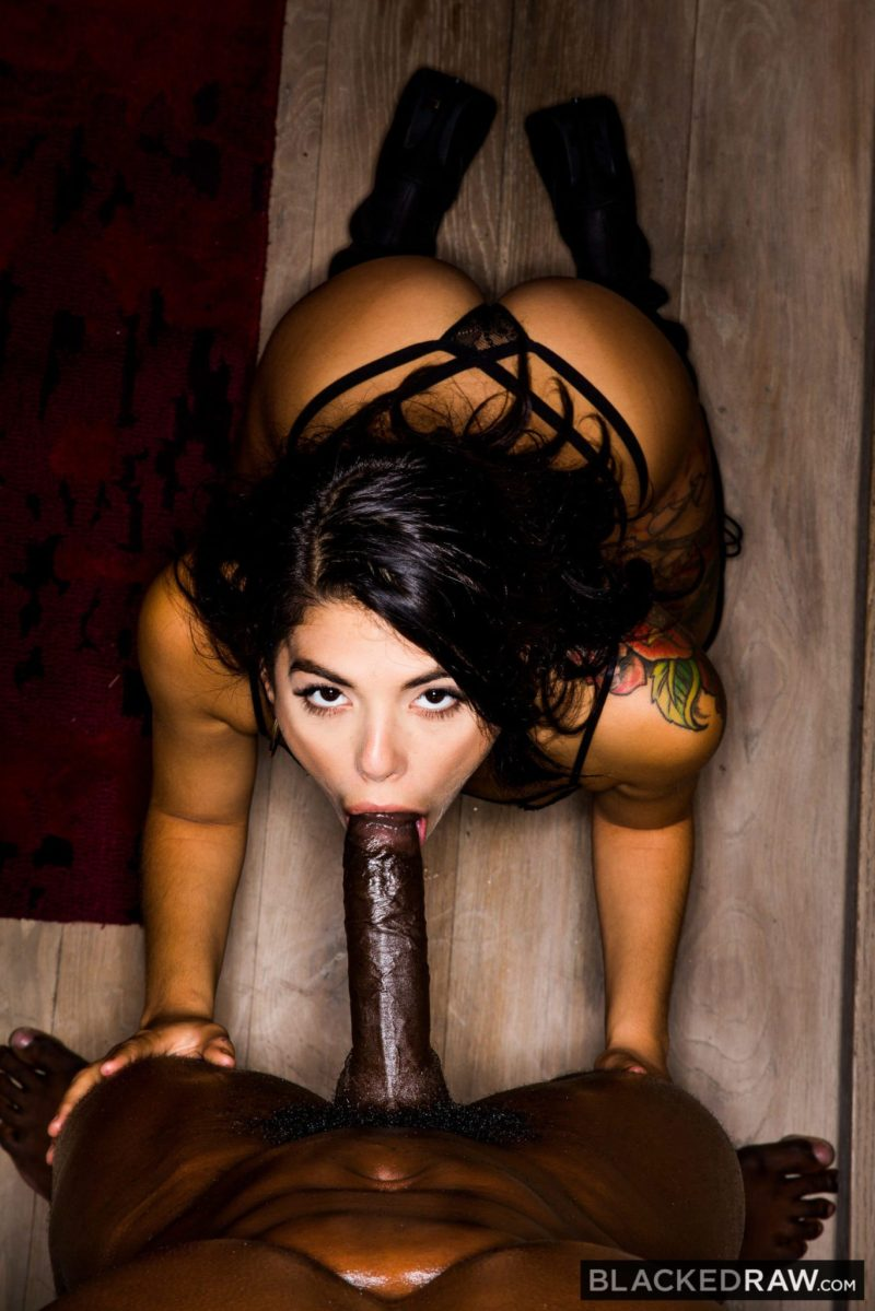 Blacked Raw: Gina Valentina is Training for the Black Only Lifestyle - image  on https://blackcockcult.com