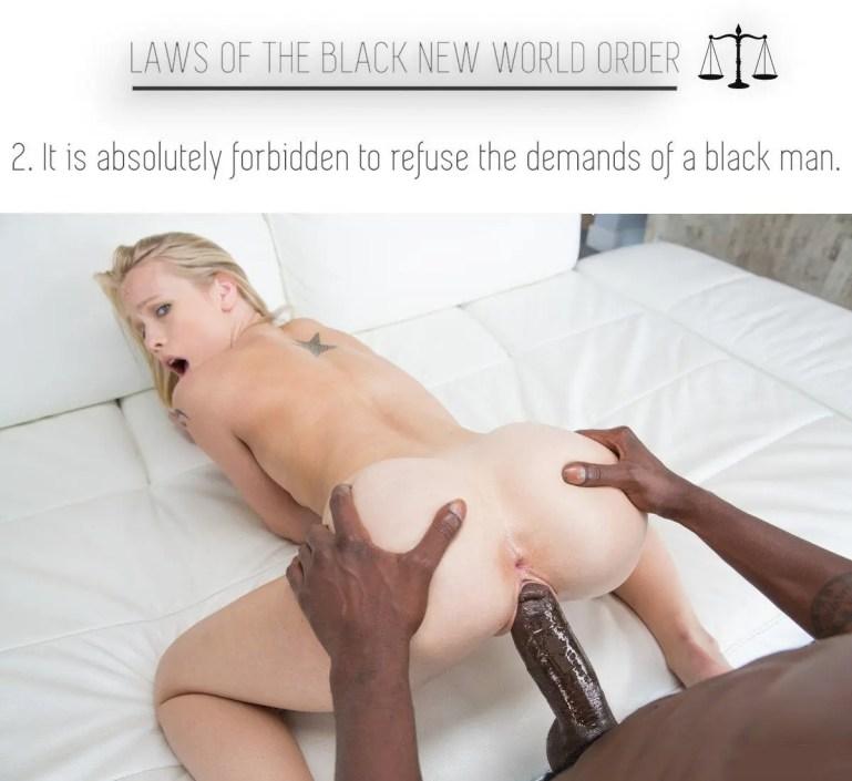 Laws Of The Black New World Order - image  on https://blackcockcult.com