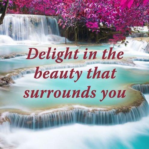 delight | Black Cruise Travel