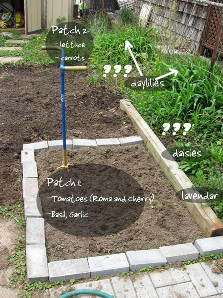 Veggie patch plans