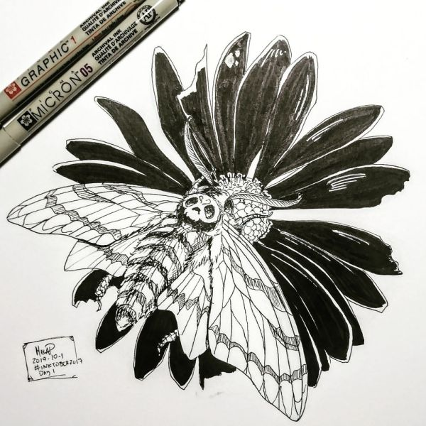 moth and flower inktober day 1 by blackdaisies