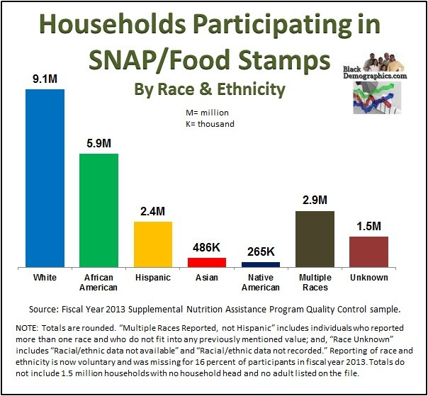 2013 Food Stamp by race chart