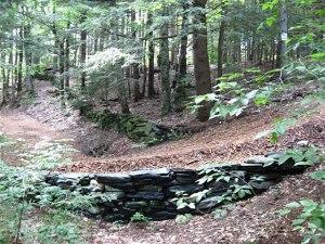 Historic Stone Wall uncoverage