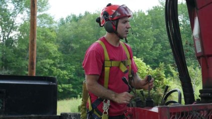 Trusted tree care VT