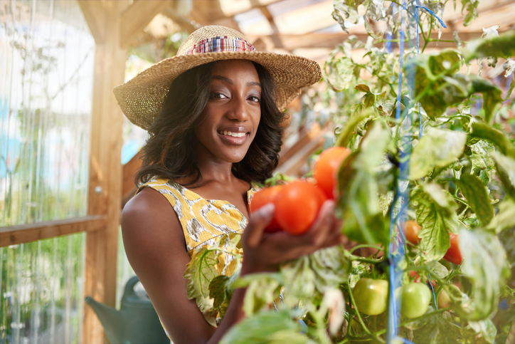 African American woman with fresh tomatoes