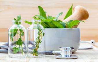 Three Natural Herbs To Keep a Healthy System In the Winter