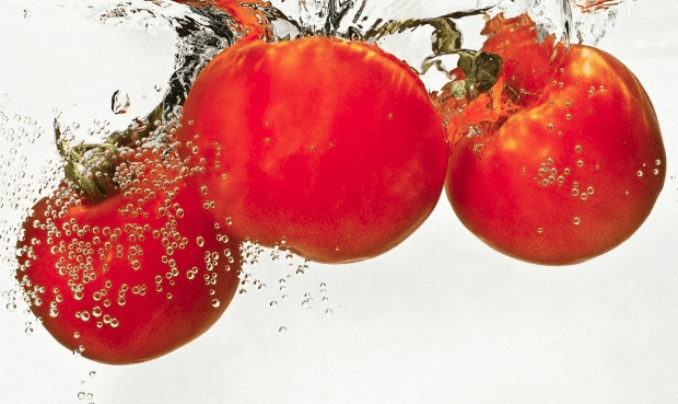 Three tomatoes in water