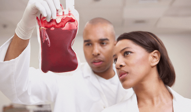 Doctors looking at a bag of blood