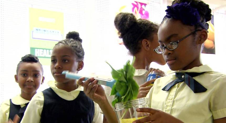 baltimore school smoothies